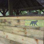 Abri anti-ours