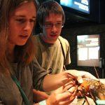 Helia, Jim et le homard